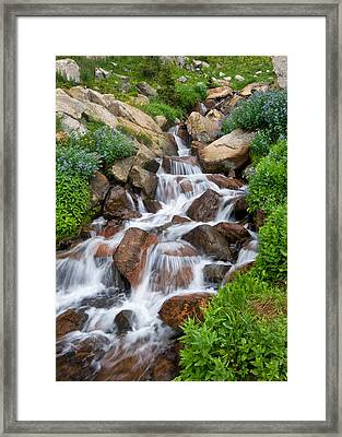 Framed Print featuring the photograph Mountain Stream by Ronda Kimbrow