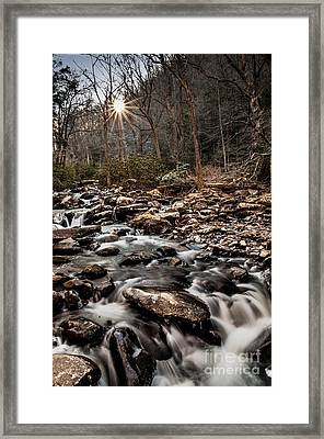 Framed Print featuring the photograph Icy Mountain Stream by Debbie Green
