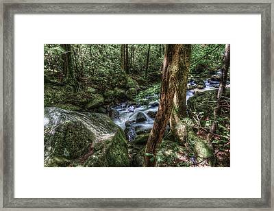 Mountain Streaming Framed Print