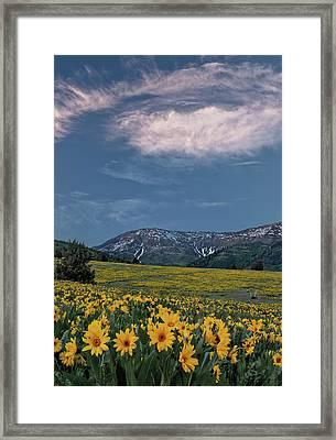 Mountain Sunset In Spring Framed Print by Leland D Howard