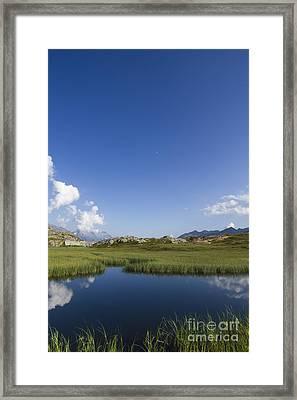Mountain Swamp Framed Print