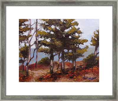 Mountain Top Pines Framed Print