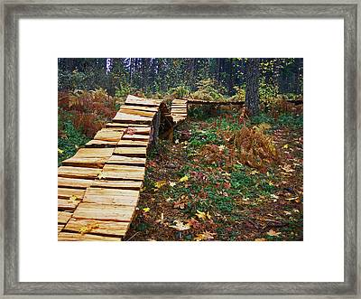 Mountain Track Framed Print