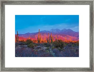 Mountainous Bliss Framed Print