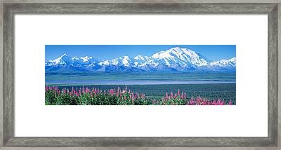 Mountains & Lake Denali National Park Framed Print by Panoramic Images