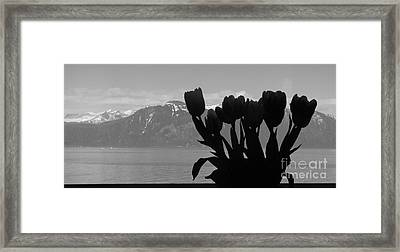 Mountains And Tulips Framed Print by Laura  Wong-Rose