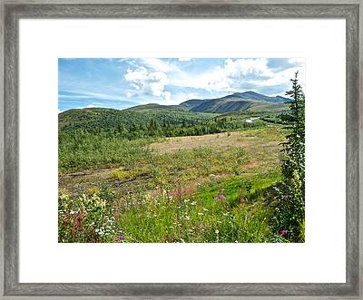 Mountains And Wildflowers Along  Taylor Highway-ak  Framed Print by Ruth Hager