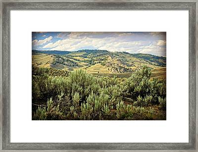 Mountains North Of The Lamar Framed Print by Marty Koch