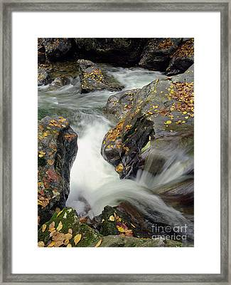 Mountains Stream 2004 Framed Print