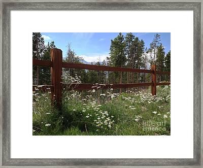 Mountainside Lawn Framed Print by Garren Zanker