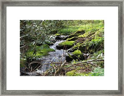 Mountian Cascade Framed Print