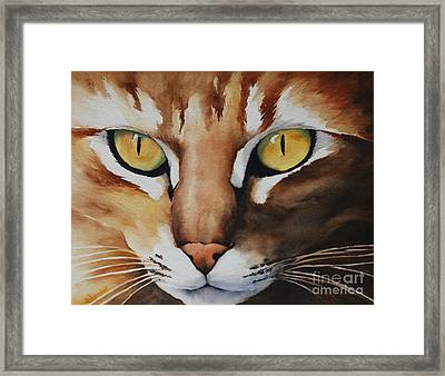 Mouse Framed Print