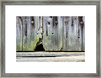 Mouse Hole Framed Print
