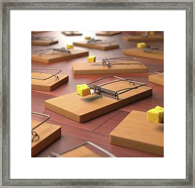 Mousetraps With Cheese Framed Print