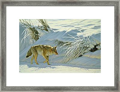 Mousing Framed Print