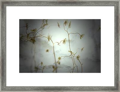 Move With Me Framed Print