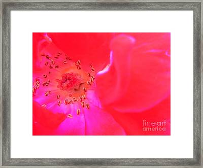 Framed Print featuring the photograph Movement Of The Heart by Agnieszka Ledwon