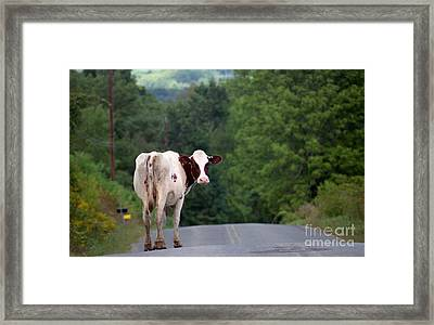 Movin On Down The Road Framed Print by Nicki McManus