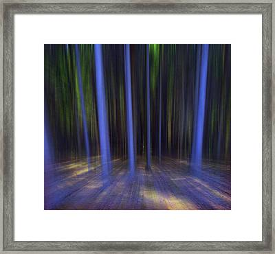Moving Forest Framed Print by Florin Birjoveanu
