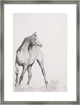 Moving Image Framed Print by Emma Kennaway