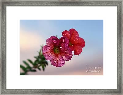 Moving On Framed Print by Krissy Katsimbras