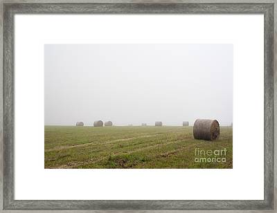 Mowed Meadow In The Mist Framed Print by Michal Boubin