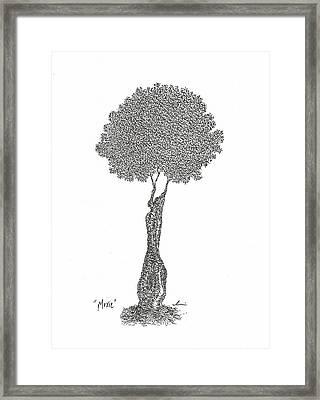 Moxie Framed Print