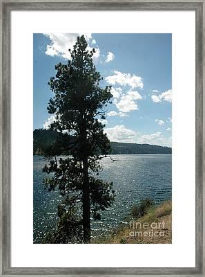 1012a Moyie Lake Bc Framed Print