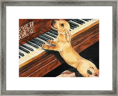 Framed Print featuring the drawing Mozart's Apprentice by Barbara Keith