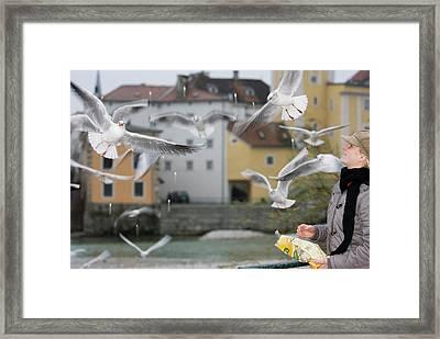 Mr A Woman Feed The Gull Framed Print