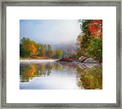 Framed Print featuring the photograph Mr Beaver   Friend-nemesis by Tom Cameron