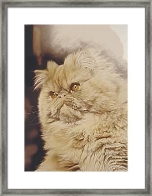 Mr. Elliot Framed Print by Alberto Ponno