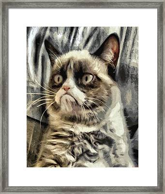 Mr Grumpy Framed Print by Joe Misrasi
