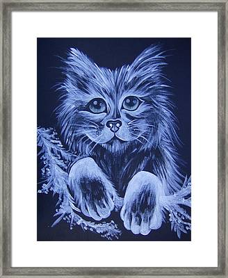 Mr. Kitty Framed Print