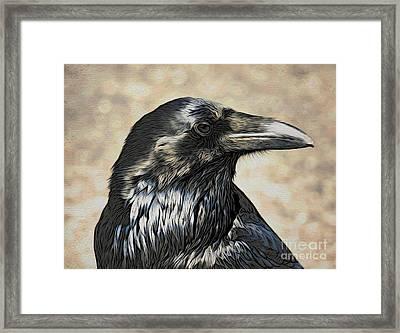 Mr. Raven Framed Print