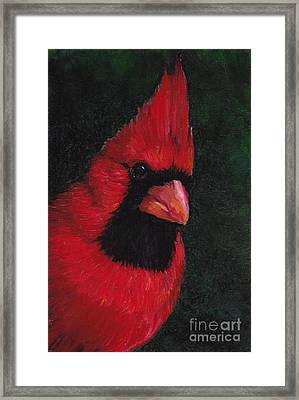 Mr Red Cardinal Framed Print by Charlotte Yealey