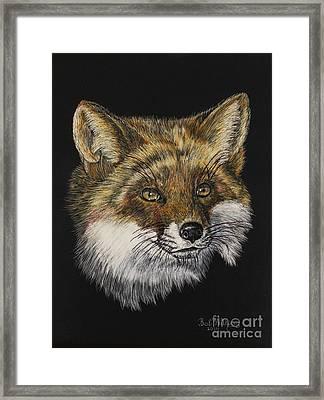 Mr. Red Fox Framed Print
