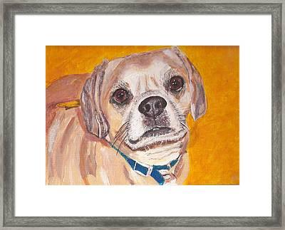 Mr. Rudi Framed Print