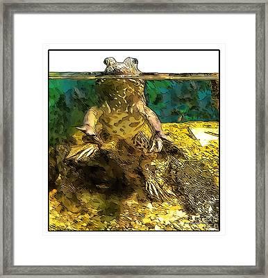 Mr. Toad Framed Print by Joan  Minchak