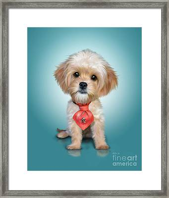 Mr. Toby Waffles The Cavapoo Framed Print