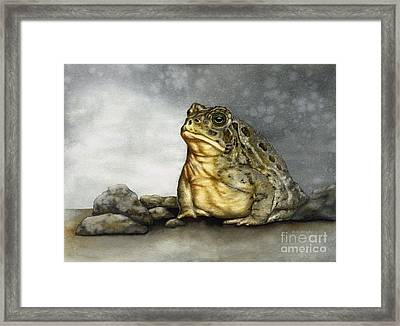 Mr. Woodhouse Toad Framed Print by Nan Wright