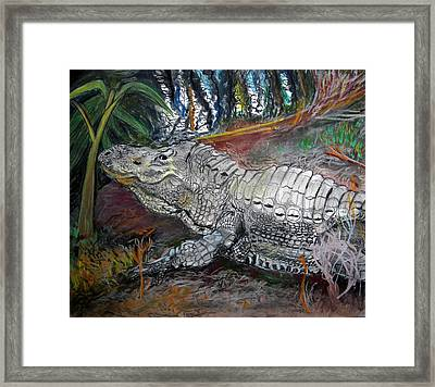 Mr.alligator Framed Print