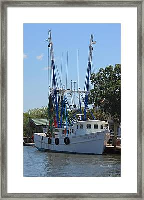 Mrs Judy Too II Framed Print by Suzanne Gaff