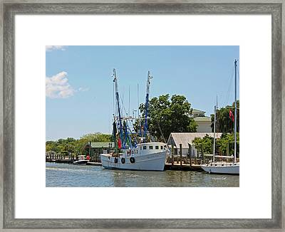 Mrs Judy Too Framed Print by Suzanne Gaff