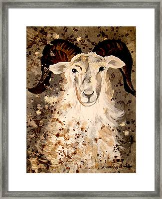 Framed Print featuring the painting Powell Mountain Goat by Amy Sorrell