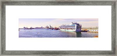 Ms Island Princess Cruise Ship Framed Print by Panoramic Images