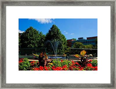 Msu Water Fountain Framed Print by John McGraw