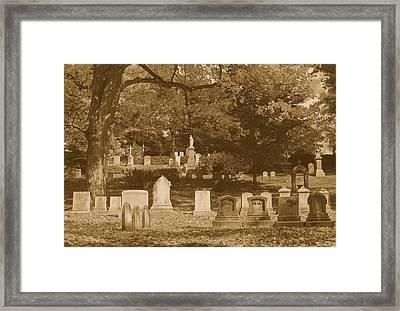 Mt Auburn Cemetery 13 Sepia Framed Print
