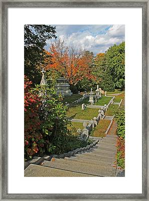 Mt Auburn Cemetery 14 Framed Print