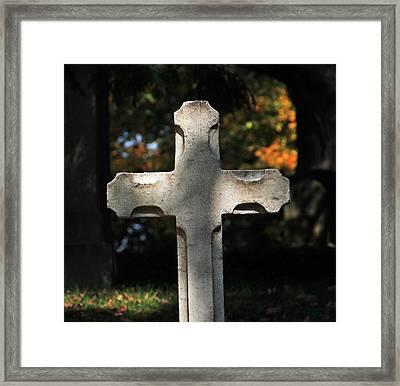 Mt Auburn Cemetery 9 Framed Print